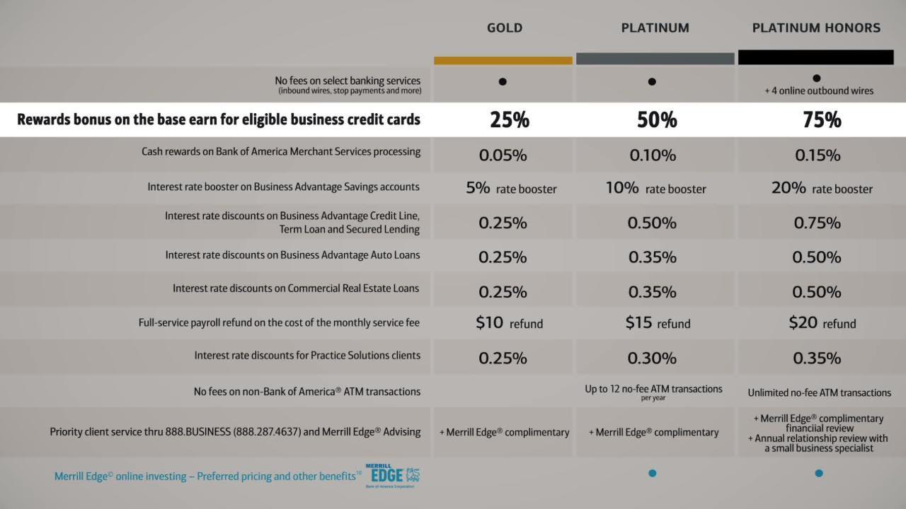 The Bank Of America Business Advantage Relationship Rewards Program